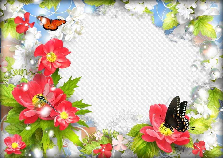 Летние открытки шаблон, картинки тюльпанами