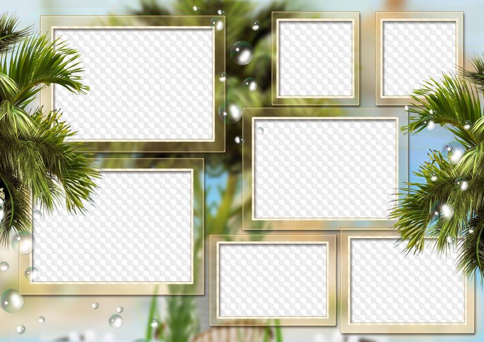 Verano, palmeras, mi familia y amigos, collage de marco de fotos, 7 ...