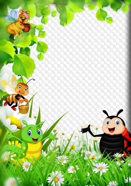PSD, PNG, Child photo frame, Funny insects. Transparent PNG Frame ...
