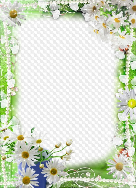 Открытка с ромашками для текста, открытки февраля своими