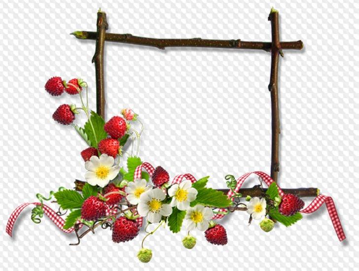 Картинка с ягодами и цветами для текста