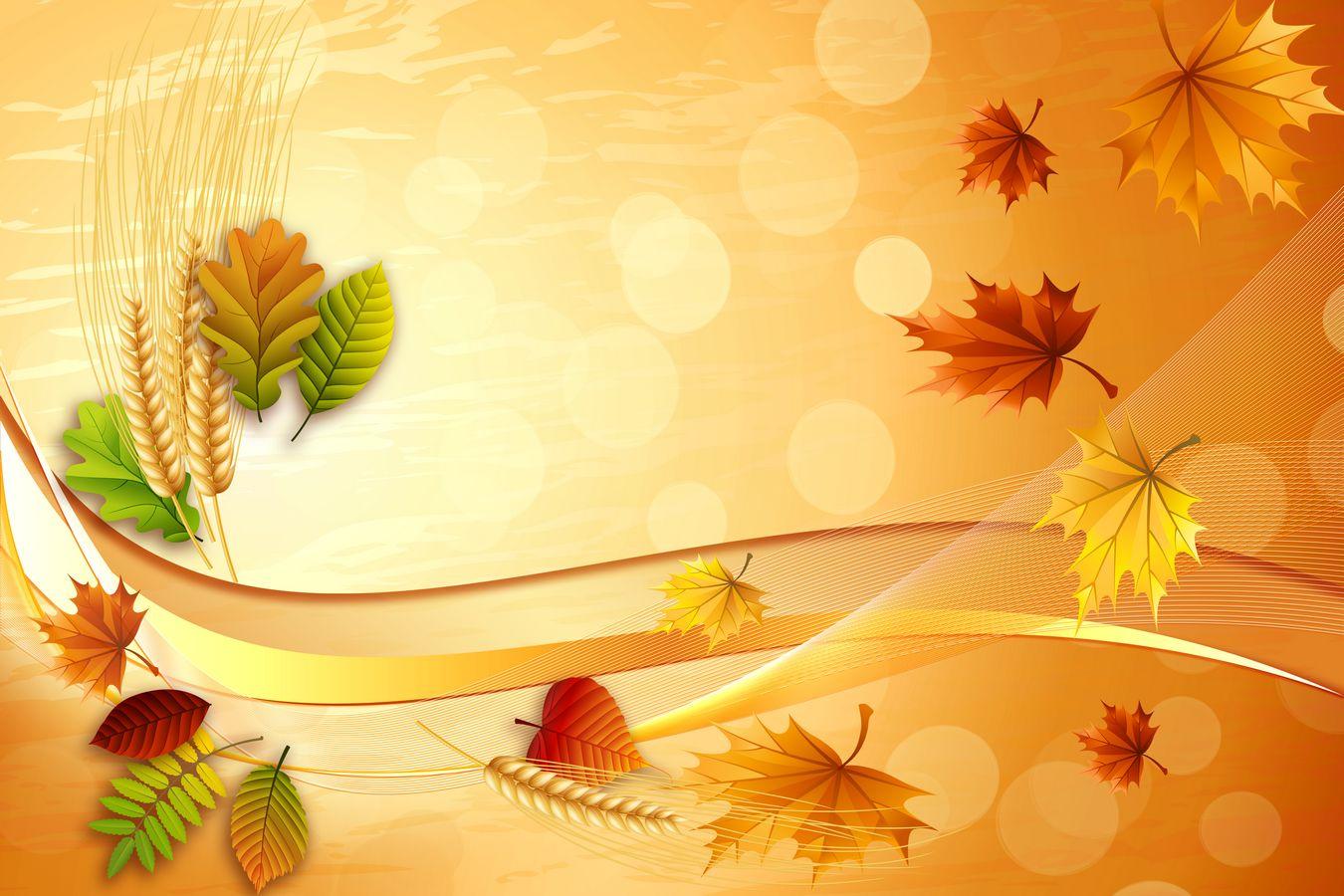 Красивые осенние фоны для открыток, приколы грусть калина
