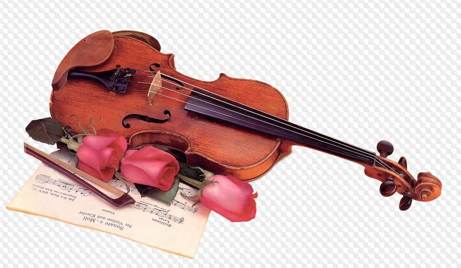 Приколы афоризмы, красивые картинки с музыкальными инструментами на фоне
