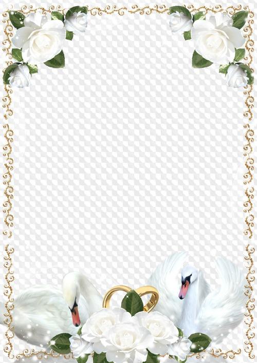 Рамки для открытки свадьбы