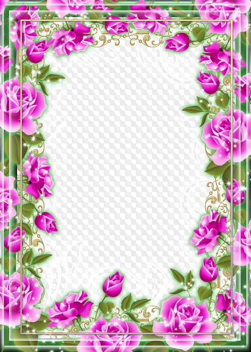 Marcos de flores de diferentes colores, Rosas