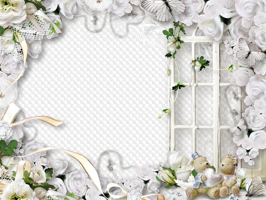 рамочки для свадебных фотографий коллажи растение хорошо чувствует
