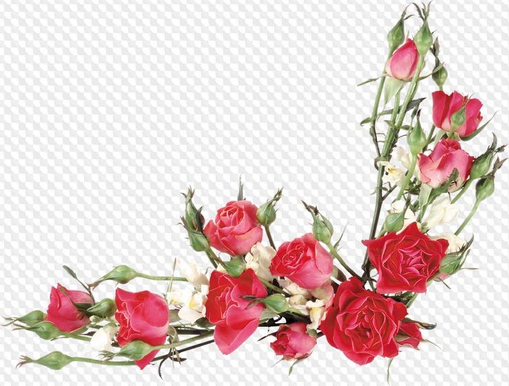 Позы, вставить цветы на открытку