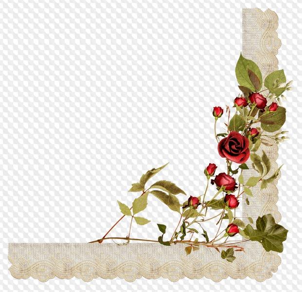Composiciones de flores, marcos y racimos con rosas rojas y un fondo ...
