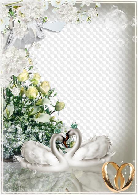 Рамки для поздравления со свадьбой