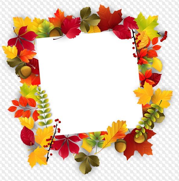 Рамки из листьев картинки на прозрачном фоне