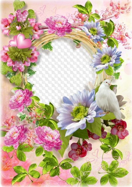 Free Flower Frame Psd Free Download