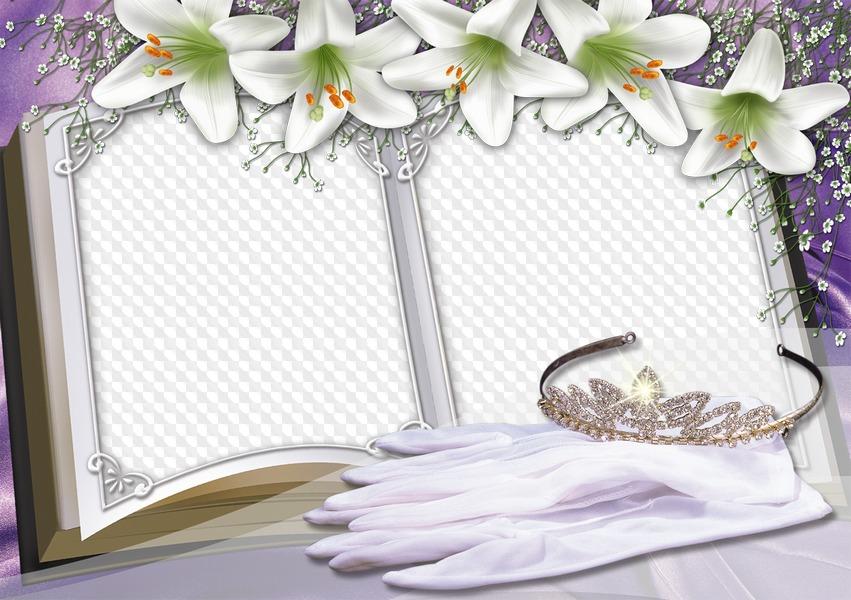 Анимации колонок, рамки для открыток свадебных