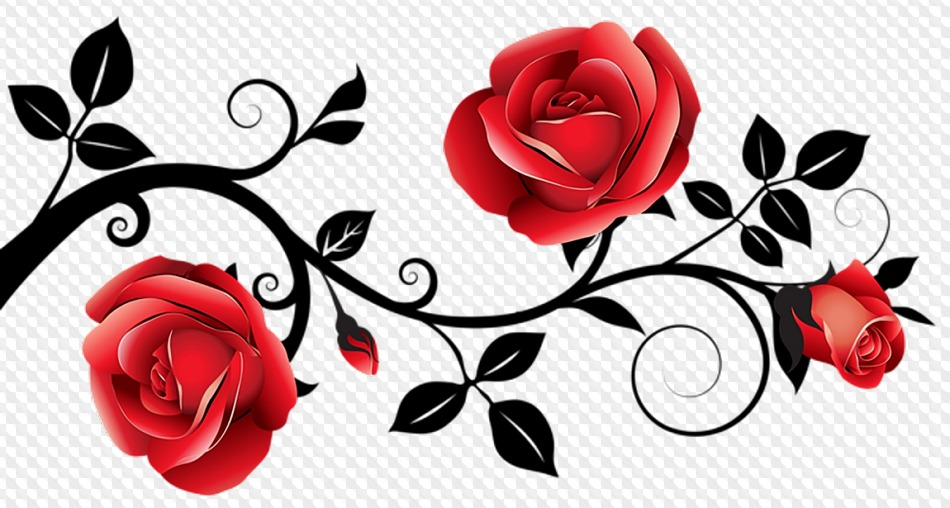 31 Png Flower Borders On Transparent Background