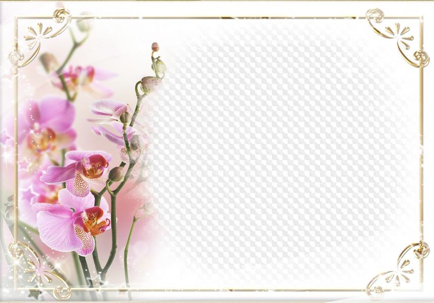 Поздравительная открытка в слоях