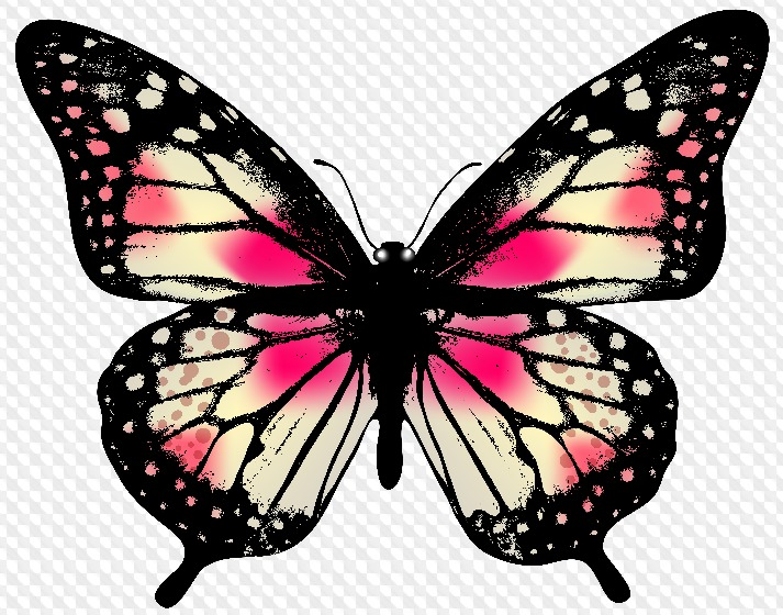 Гифки пятницей, бабочки картинка без фона