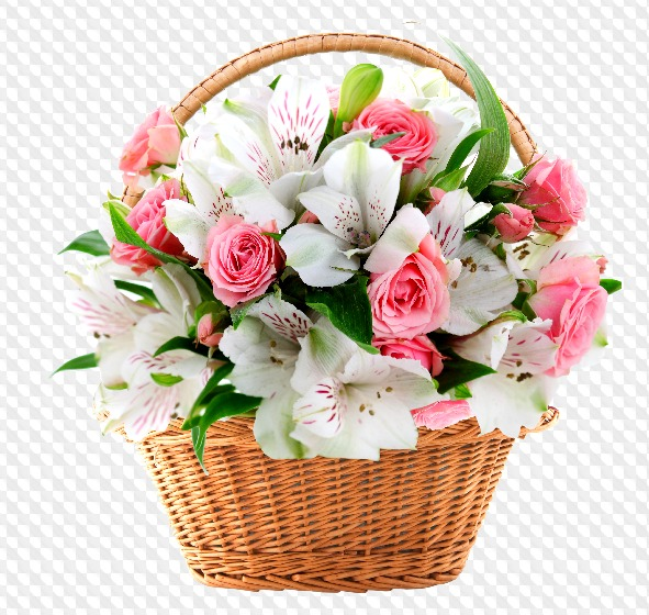 """Image result for photos of roses for birthday"""""""