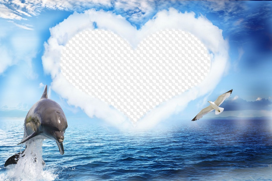 Heart in clouds at sea with dolphin, photo frame. Transparent PNG ...