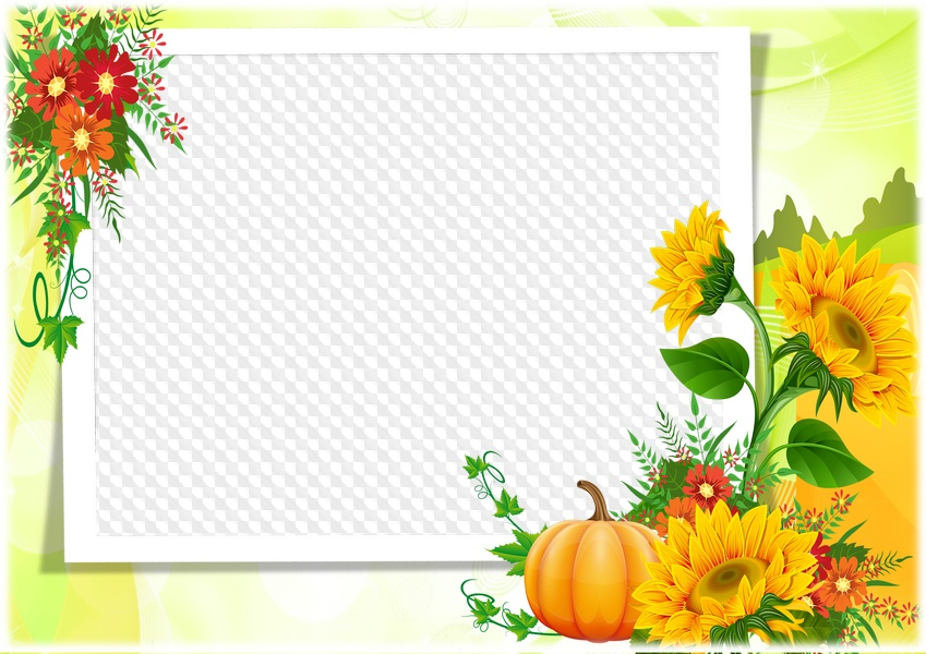 Sunflowers, photo frame. Transparent PNG Frame, PSD Layered Photo ...