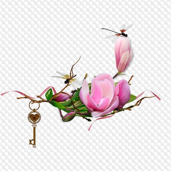 Magnolia Png Flores Sin Fondo