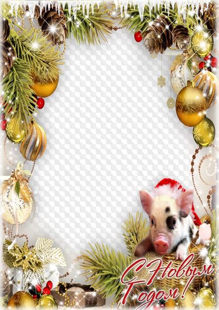 Фоторамки для поздравления с новым годом свиньи