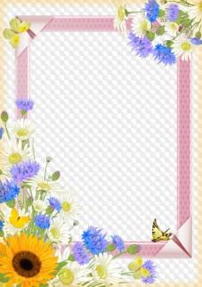 Daisies and cornflowers, photo frame