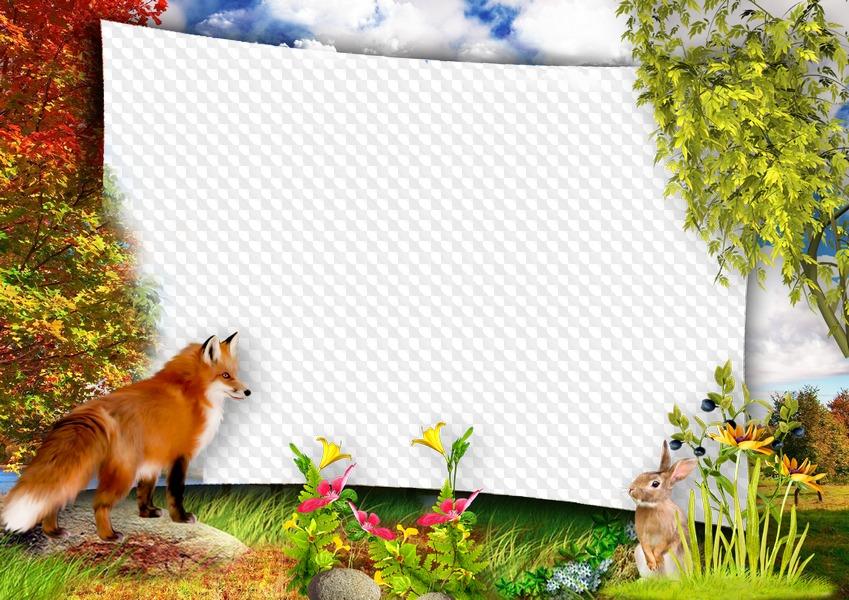 Юлии, картинки рамки с животными
