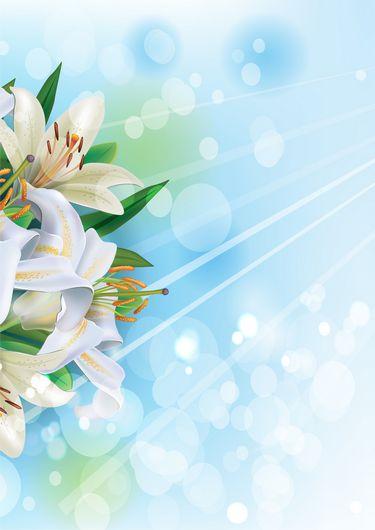 Background Flower Wallpaper Hd Png