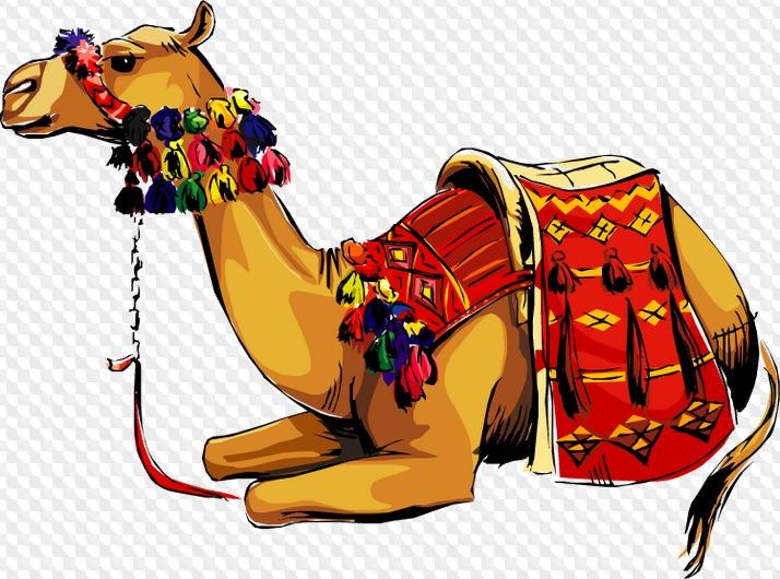 Открытка верблюд, банк открытка мая