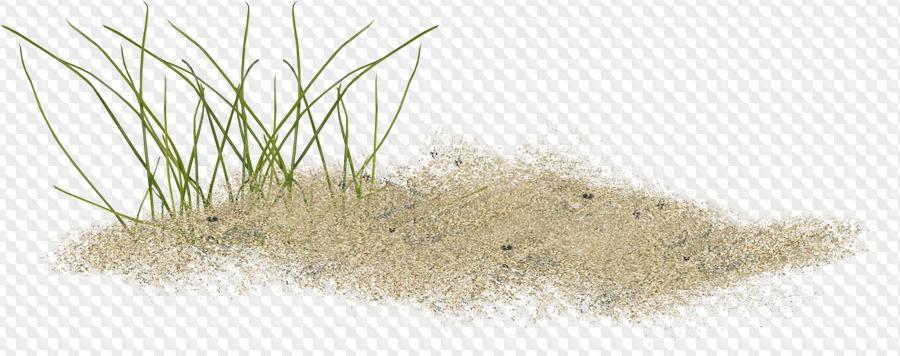 Картинки с песком на прозрачном фоне