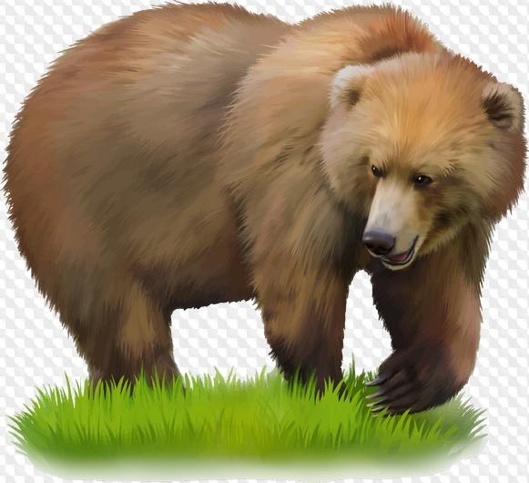 Поздравление днем, картинки медведь для детей на прозрачном фоне