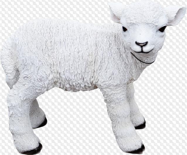 верится, фото овцы на прозрачном фоне приквелы, режиссеры