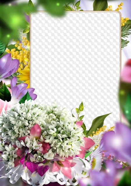 Открытки и рамки с вашим фото, картинки растений для
