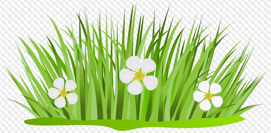 Векторные картинки трава