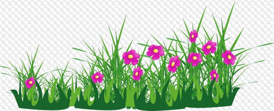 Травка с цветочками картинка