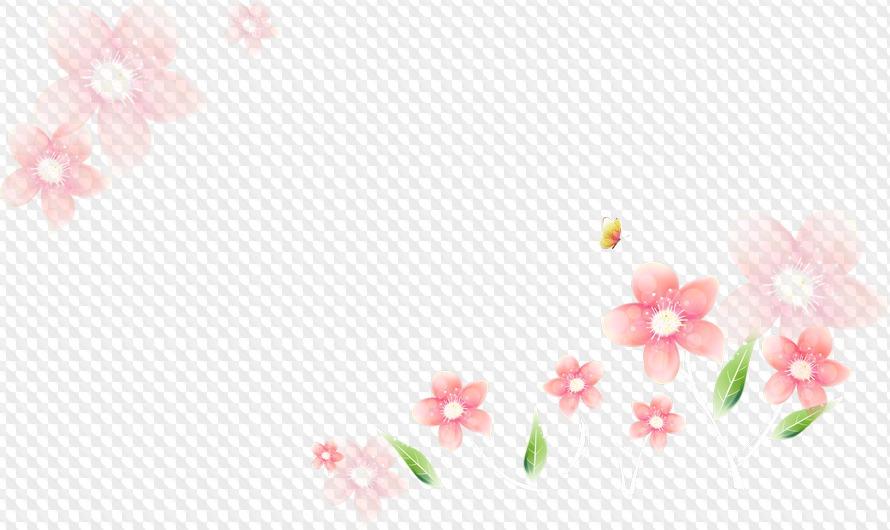 нежные цветы картинки на прозрачном фоне головоломка бесплатной основе
