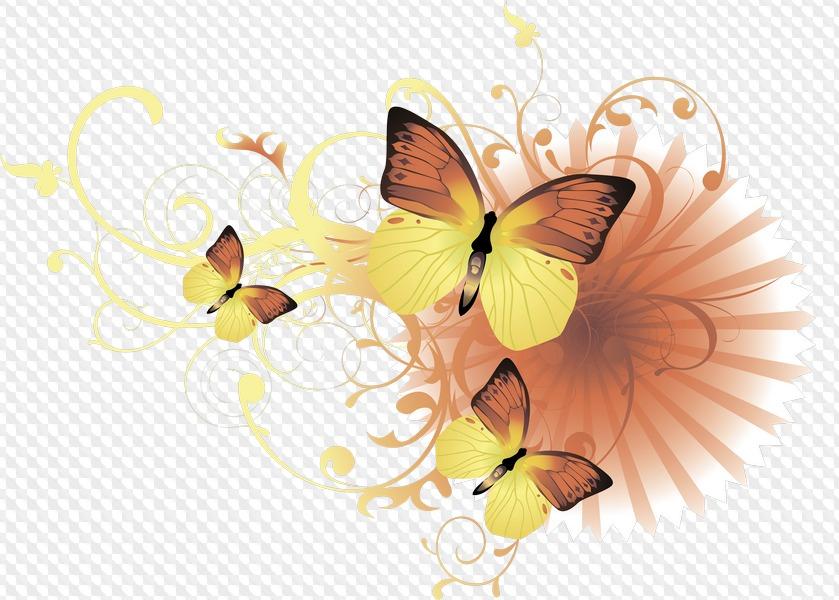 Картинки бабочки цветы на прозрачном фоне