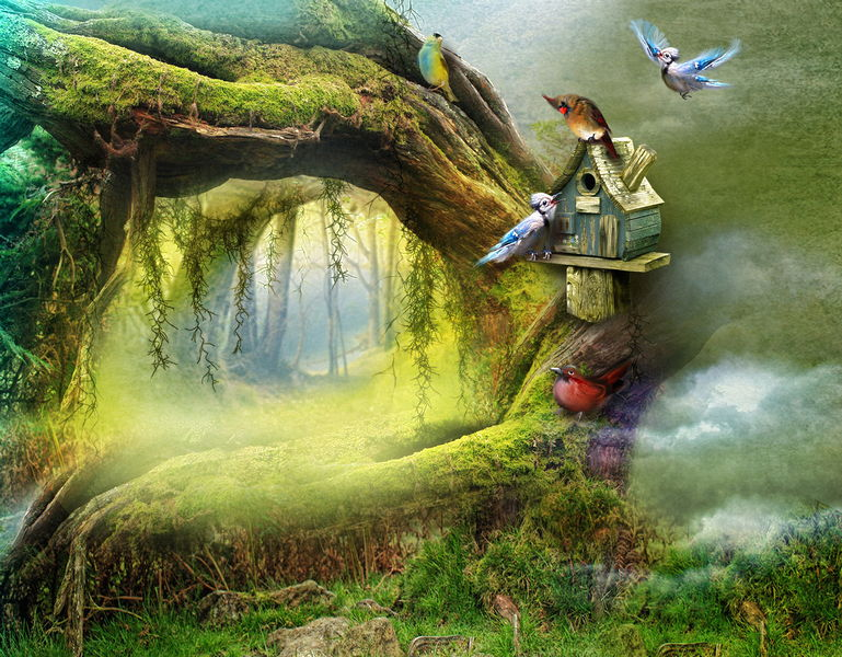 40 JPG, Fabulous nature, backgrounds for photoshop