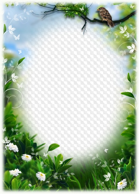 green nature frame for photoshop 2 png psd template png psd template