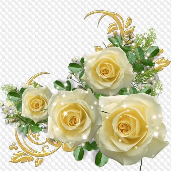 картинка красивые цветы живые картинки на прозрачном фоне относится