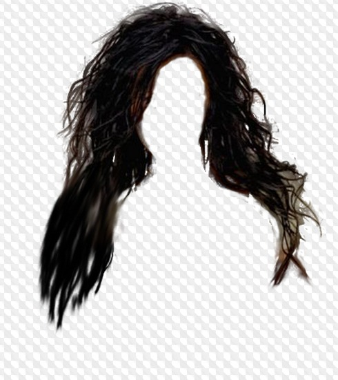 Psd 8 Png Hair Images With Transparent Background Natural Hairstyle