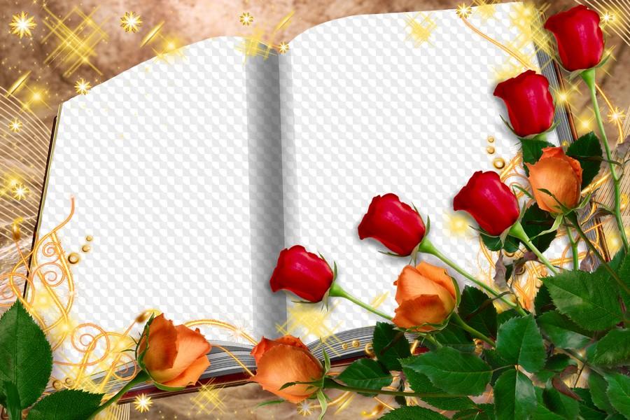 Надписью, рамки открыток книга