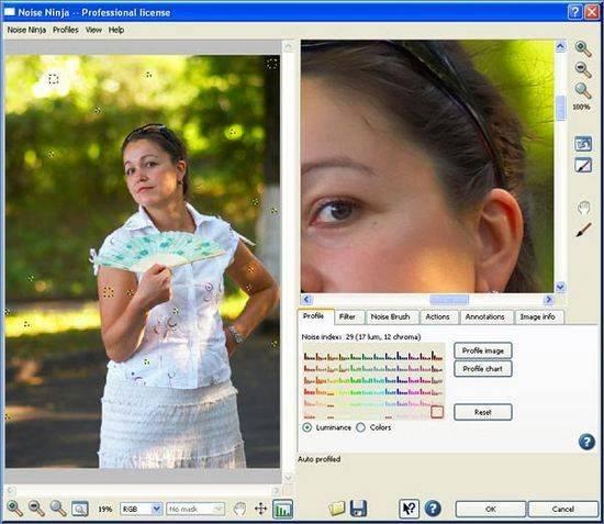 1242004375 noiseninja 10 Plugin làm mịn ảnh hay nhất cho Photoshop