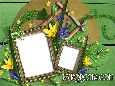 Scrap-page frame for Adobe Photoshop - The summer nature