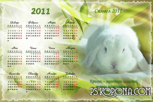 Calendar - the Rabbit, a symbol of 2011
