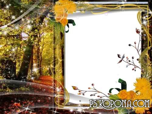 Frame for photo – Autumn forest