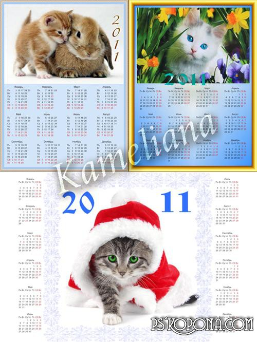 Calendars for 2011 - Sweet pussies