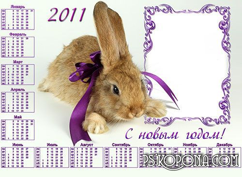 Calendar Frame 2011 - Rabbit with a purple bow