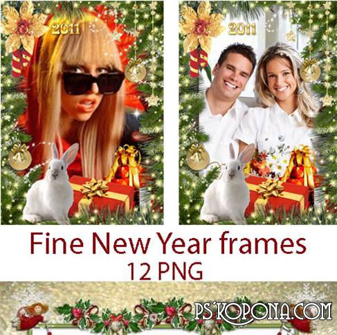 Beautiful New Year's frameworks for photos