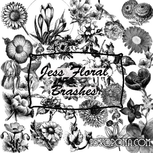ABR Brushes for photoshop-Vintage flowers free download