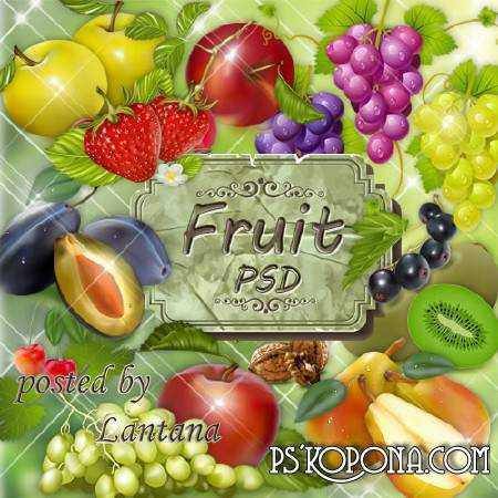 Clipart for Photoshop - Fruits and fruit composition